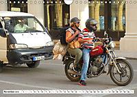 CHINA BIKES - Chinesische Motorräder in Kuba (Wandkalender 2019 DIN A4 quer) - Produktdetailbild 11