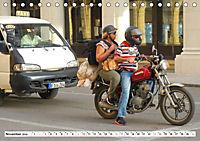 CHINA BIKES - Chinesische Motorräder in Kuba (Tischkalender 2019 DIN A5 quer) - Produktdetailbild 11