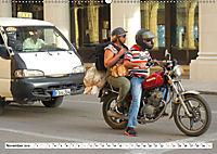 CHINA BIKES - Chinesische Motorräder in Kuba (Wandkalender 2019 DIN A2 quer) - Produktdetailbild 11