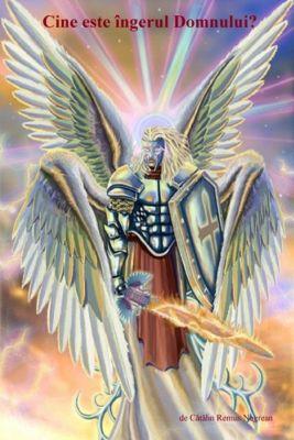 Cine este îngerul Domnului?, Cătălin Negrean