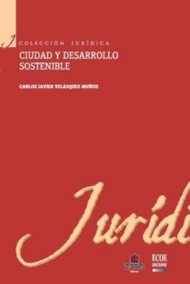 Ciudad y desarrollo sostenible, Carlos Javier Velásquez Muñoz