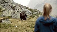 Clara und das Geheimnis der Bären - Produktdetailbild 5