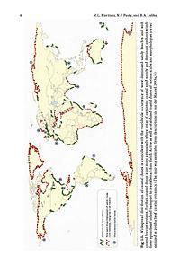 Coastal Dunes - Produktdetailbild 1