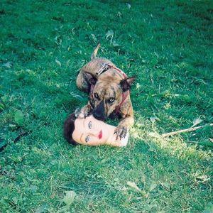 Cody (Vinyl), Joyce Manor