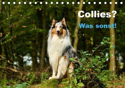 Collies? Was sonst! (Tischkalender 2019 DIN A5 quer), Yvonne Janetzek