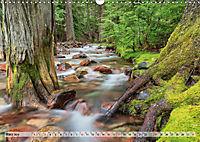 Color of Nature - Magie der Farben (Wandkalender 2019 DIN A3 quer) - Produktdetailbild 3