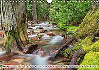 Color of Nature - Magie der Farben (Wandkalender 2019 DIN A4 quer) - Produktdetailbild 3