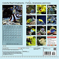 Colorful Reef Inhabitants - Fishes, Anemones and more (Wall Calendar 2019 300 × 300 mm Square) - Produktdetailbild 13