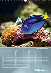 Colorful Reef Inhabitants (Wall Calendar 2019 DIN A3 Portrait) - Produktdetailbild 10
