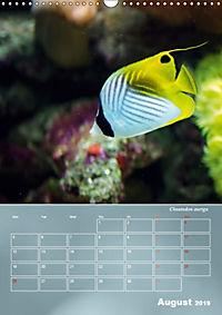 Colorful Reef Inhabitants (Wall Calendar 2019 DIN A3 Portrait) - Produktdetailbild 8