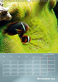 Colorful Reef Inhabitants (Wall Calendar 2019 DIN A3 Portrait) - Produktdetailbild 11
