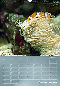 Colorful Reef Inhabitants (Wall Calendar 2019 DIN A3 Portrait) - Produktdetailbild 12