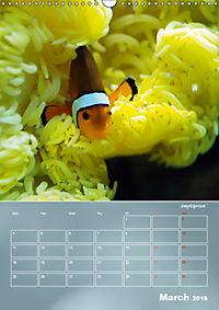 Colorful Reef Inhabitants (Wall Calendar 2019 DIN A3 Portrait) - Produktdetailbild 3