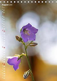 Colors of Nature (Tischkalender 2019 DIN A5 hoch) - Produktdetailbild 8