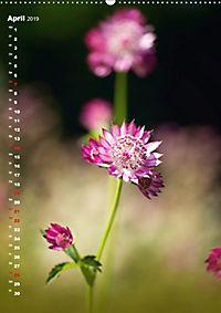 Colors of Nature (Wandkalender 2019 DIN A2 hoch) - Produktdetailbild 4