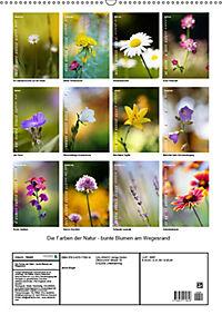 Colors of Nature (Wandkalender 2019 DIN A2 hoch) - Produktdetailbild 13