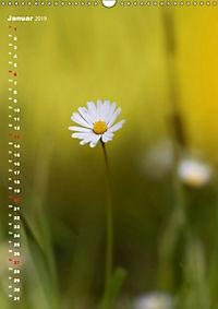 Colors of Nature (Wandkalender 2019 DIN A3 hoch) - Produktdetailbild 1