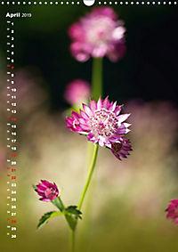 Colors of Nature (Wandkalender 2019 DIN A3 hoch) - Produktdetailbild 4