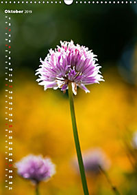 Colors of Nature (Wandkalender 2019 DIN A3 hoch) - Produktdetailbild 10