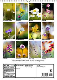 Colors of Nature (Wandkalender 2019 DIN A3 hoch) - Produktdetailbild 13