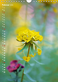 Colors of Nature (Wandkalender 2019 DIN A4 hoch) - Produktdetailbild 2