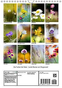 Colors of Nature (Wandkalender 2019 DIN A4 hoch) - Produktdetailbild 13
