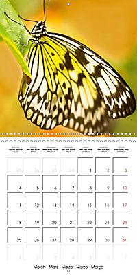 Colourful Butterflies (Wall Calendar 2019 300 × 300 mm Square) - Produktdetailbild 3