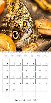 Colourful Butterflies (Wall Calendar 2019 300 × 300 mm Square) - Produktdetailbild 4