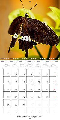 Colourful Butterflies (Wall Calendar 2019 300 × 300 mm Square) - Produktdetailbild 7