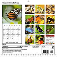 Colourful Butterflies (Wall Calendar 2019 300 × 300 mm Square) - Produktdetailbild 13