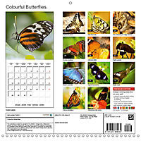 Colourful Butterflies (Wall Calendar 2019 300 × 300 mm Square) - Produktdetailbild 13