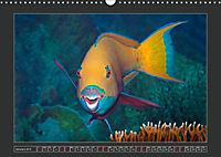 Colourful Marine Life (Wall Calendar 2019 DIN A3 Landscape) - Produktdetailbild 1