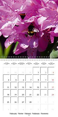 Colourful Rhododendron (Wall Calendar 2019 300 × 300 mm Square) - Produktdetailbild 2