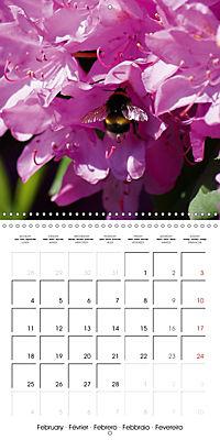 Colourful Rhododendron (Wall Calendar 2019 300 × 300 mm Square) - Produktdetailbild 2