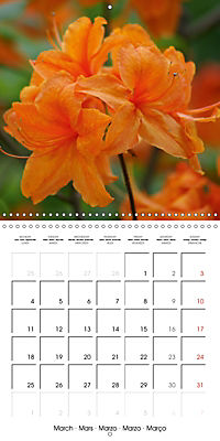 Colourful Rhododendron (Wall Calendar 2019 300 × 300 mm Square) - Produktdetailbild 3