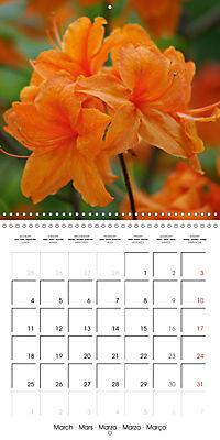 Colourful Rhododendron (Wall Calendar 2019 300 × 300 mm Square) - Produktdetailbild 3