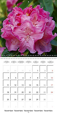 Colourful Rhododendron (Wall Calendar 2019 300 × 300 mm Square) - Produktdetailbild 11