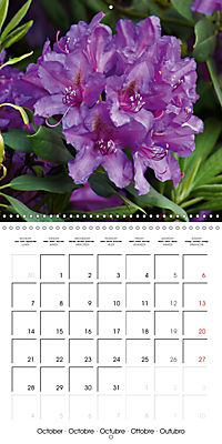 Colourful Rhododendron (Wall Calendar 2019 300 × 300 mm Square) - Produktdetailbild 10