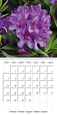 Colourful Rhododendron (Wall Calendar 2019 300 × 300 mm Square) - Produktdetailbild 10
