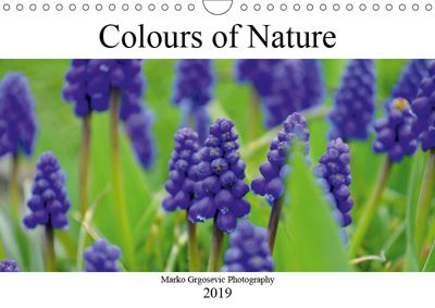 Colours of Nature (Wall Calendar 2019 DIN A4 Landscape), Marko Grgosevic