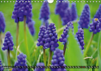 Colours of Nature (Wall Calendar 2019 DIN A4 Landscape) - Produktdetailbild 8