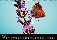 Colours Of Provence (Wall Calendar 2019 DIN A3 Landscape) - Produktdetailbild 5