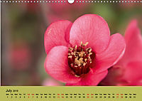 Colours of the small world (Wall Calendar 2019 DIN A3 Landscape) - Produktdetailbild 7