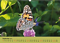 Colours of the small world (Wall Calendar 2019 DIN A3 Landscape) - Produktdetailbild 9