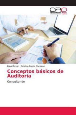Conceptos básicos de Auditoría, David Pavón, Catalina Rueda Manzano