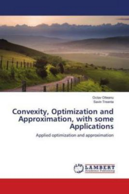 Convexity, Optimization and Approximation, with some Applications, Octav Olteanu, Savin Treanta