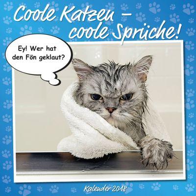 Coole Katzen Broschurkal. 2018