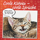 Coole Katzen - coole Sprüche Broschurkal. 2017