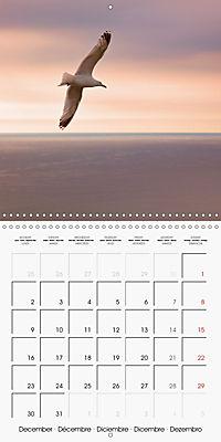 Cornish coast (Wall Calendar 2019 300 × 300 mm Square) - Produktdetailbild 12