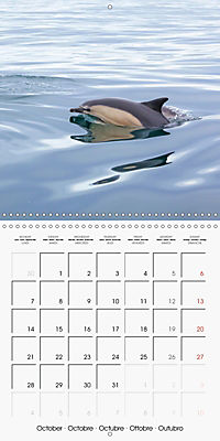 Cornish coast (Wall Calendar 2019 300 × 300 mm Square) - Produktdetailbild 10